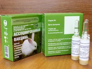 vakcina krolik